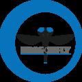 Dragonfly-logo-no-company.png