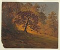 Drawing, Autumn Foliage, 1867 (CH 18193911).jpg