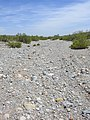Dry Desert Stream Bed at Red Rock Canyon NCA.jpg