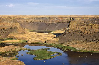 Scalloped precipice with four major alcoves, in central Washington scablands