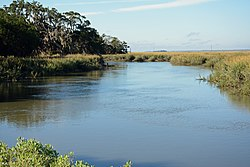 Dulpin River, McIntosh County, GA, US.jpg