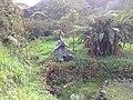 ELEFANTHE DE PIEDRA - panoramio.jpg