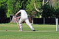 Eastons CC v. Chappel and Wakes Colne CC at Little Easton, Essex, England 02.jpg