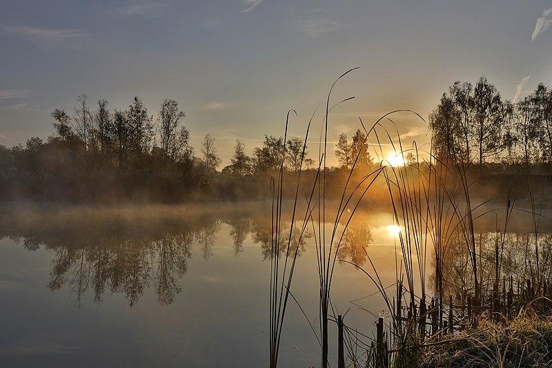 File:Ein kalter Wintermorgen in der Erdekaut.jpg