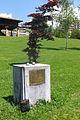 En recuerdo de las víctimas del Holocausto nazi (Oviedo).jpg