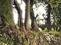 Entrada de Tizatlan - panoramio.jpg