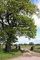Entrance to Penlan Farm - geograph.org.uk - 178422.jpg