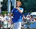 Ernests Gulbis at the 2010 US Open 06.jpg