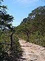 Estrada - panoramio (6).jpg
