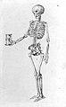 F. Platter, De corporis humani structura et usu... Wellcome L0025474.jpg