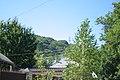 FOREST VIEW, ST. APSHERONSKAYA (2011-08-09 10-48) - panoramio.jpg