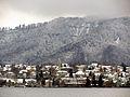 Fallätsche - Wollishofen - Zürichhorn 2011-12-19 12-33-13 (SX230).JPG