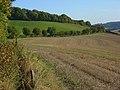 Farmland, Radnage - geograph.org.uk - 1014379.jpg