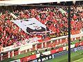 Fedotov Banner.JPG