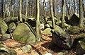 "Felsenmeer bei Reichenbach (""Felsenmeer"" near Reichenbach) - geo.hlipp.de - 5902.jpg"