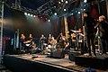 Festival des Vieilles Charrues 2017 - Moger Orchestra - 019.jpg