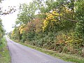 Fiddington Brake - geograph.org.uk - 64258.jpg