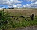 Field near Cliffe Hill Quarry - geograph.org.uk - 513963.jpg