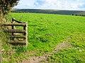 Field off Two Moors Way - geograph.org.uk - 53636.jpg