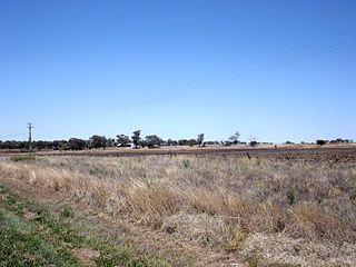 Aubigny, Queensland Town in Queensland, Australia