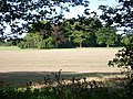 Fields beside Headley Road - geograph.org.uk - 54110.jpg