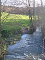 Fingle Brook - geograph.org.uk - 290539.jpg