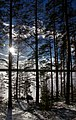Finland 2017-02-25 (33211230785).jpg