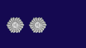 Knesset Guard - Image: First Guard Officer Kzin mishmar of Knesset Guard