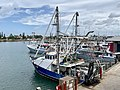 Fishing trawlers at the harbour at Mooloolah River, Mooloolaba, Queensland 02.jpg