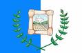 Flag of Garcia Hernandez.png