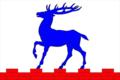 Flag of Porosozerskoe rural settlement.png