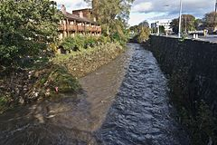 Flooding In Dublin - The River Dodder.jpg