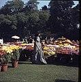 Flora exhibiton in Lucknow.jpg