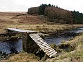Footbridge over the Luce - geograph.org.uk - 1168930.jpg