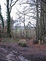 Footpath off Combe Hay Lane - geograph.org.uk - 358364.jpg