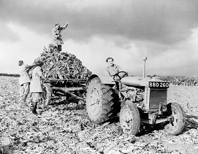 Fordson tractor with members of British Women's Land Army 1940s