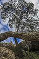 Formación rocosa en la Sierra de Escalona.jpg