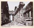 Fotografi på tempel i Paestum - Hallwylska museet - 104087.tif