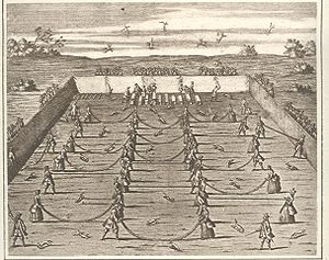 Fox tossing - A fox-tossing tournament of the early 18th century, as depicted in Der vollkommene deutsche Jäger (1719)