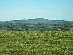 Freshly Cut Grass - geograph.org.uk - 181924.jpg