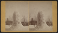 Frozen fountain, from Robert N. Dennis collection of stereoscopic views 2.png