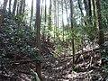 Fukusuminjo05.jpg