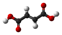 Ball-and-stick model of the fumaric acid molecule