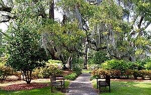 Orton Plantation - Orton Plantation Gardens