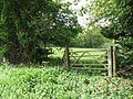 Gate into an empty pasture - geograph.org.uk - 1300384.jpg