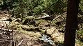 Gelobtbachtal, údolí Klopotského potoka - panoramio (27).jpg