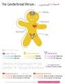 Genderbread Person v4 POSTER 18x28.pdf