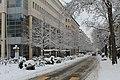 Geneve Sous la neige - 2013 - panoramio (5).jpg