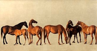 Whistlejacket - Mares and Foals without a background, other Rockingham horses painted by Stubbs on his visit in 1762.  Whistlejacket was in the pair piece showing stallions.