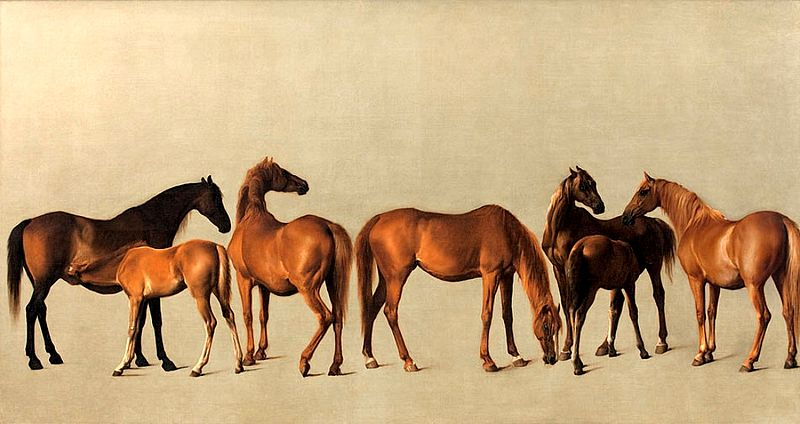 File:George Stubbs Mares and Foals 1762.jpg